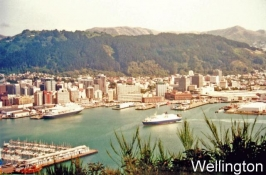Wellington_3
